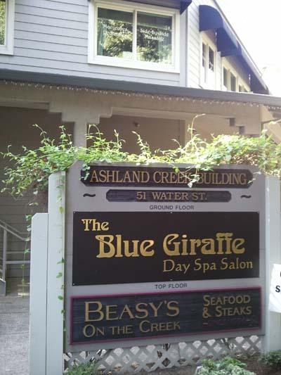 Blue Giraffe Day Spa Outside